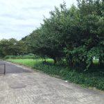茨城県鹿嶋市林