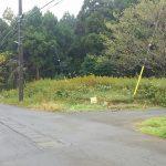 茨城県鹿嶋市武井